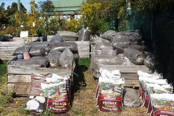 compost-bags-with-apple-bins-ready-for-use